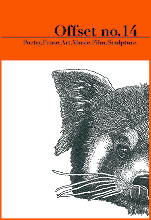 Offset 14 cover, showing a drawing of the right side of a red panda bear's face, background is orange.